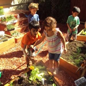 Garden-Care-At-Montessori-School