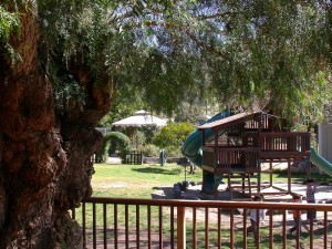 Montessori Child Development Center playground and gardens