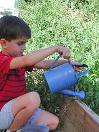 Montessori-Plant-Care-Boy