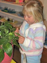 Montessori-Plant-Care